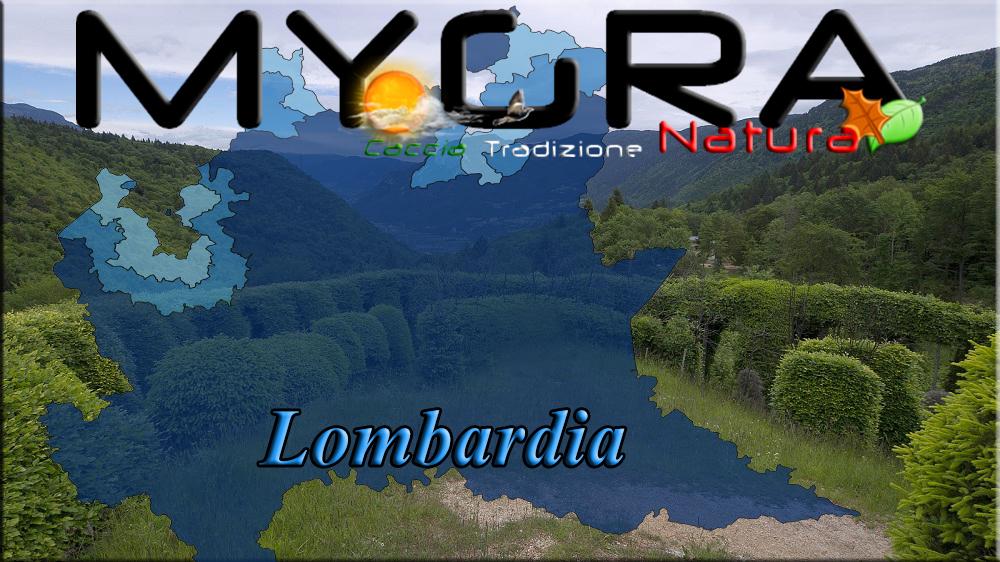 Regione Lombardia: nulla di fatto per deroghe e roccoli