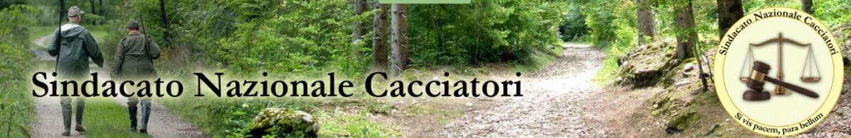 Sicilia. La Federcaccia chiede che venga abrogato il divieto di caccia agli extraregionali. Leggi l'articolo