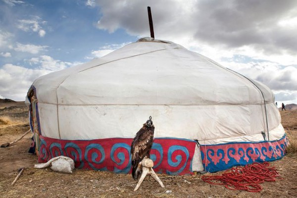 cacciatori-con-le-Aquile-della-Mongolia-09