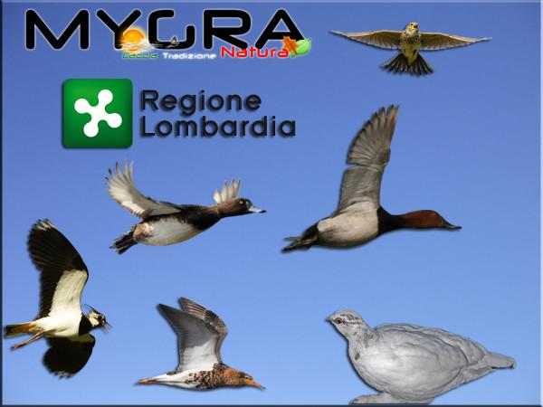 Lombardia 1