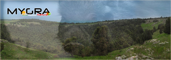 parco nazionale alta muriga