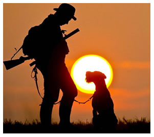 Cane caccia