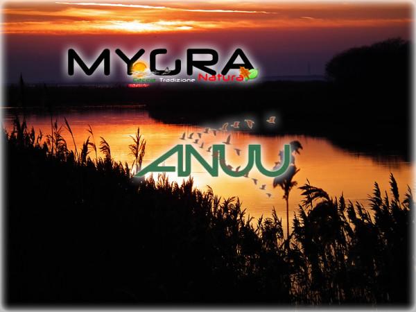 AnuuMigra