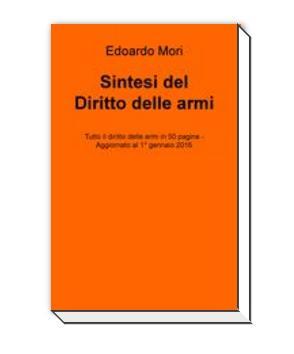 Libro miniatura