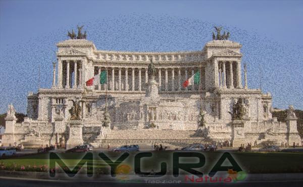 altare_della_patria_roma-storni