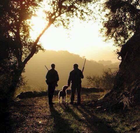 Cacciatori con cane