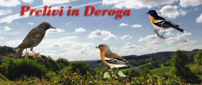 Deroga migratoria.it