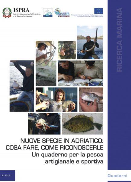 Miniatura quaderno nuove specie pesci