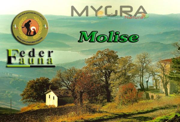 Calendario Venatorio Molise.Il Sindacato Venatorio Italiano Regione Molise Propone