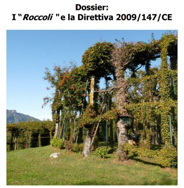 miniatura Dossier sui roccoli