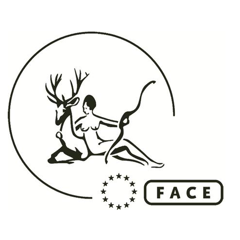 Face -.-.-