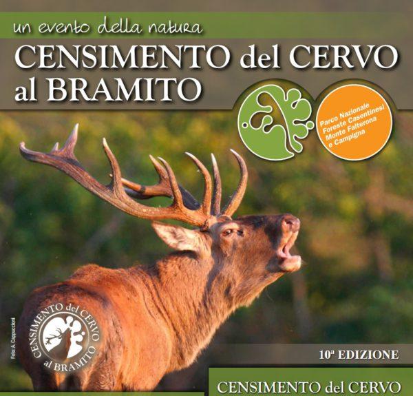 Censimento cervo bramito 10 edizione