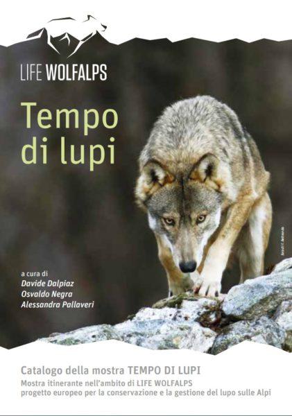 tempo-di-lupi