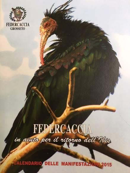 ibise-federcaccia