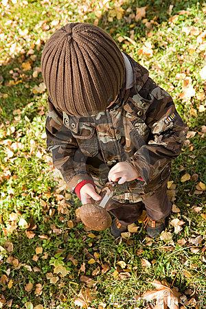 bambino-che-raccoglie-fungo