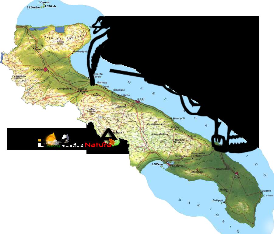 Puglia. Tesserini venatori annata 2017/2018.