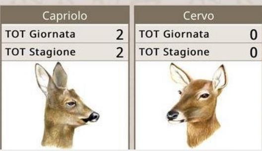 In Toscana disponibile per smartphone 'TosCaccia', il tesserino venatorio digitale