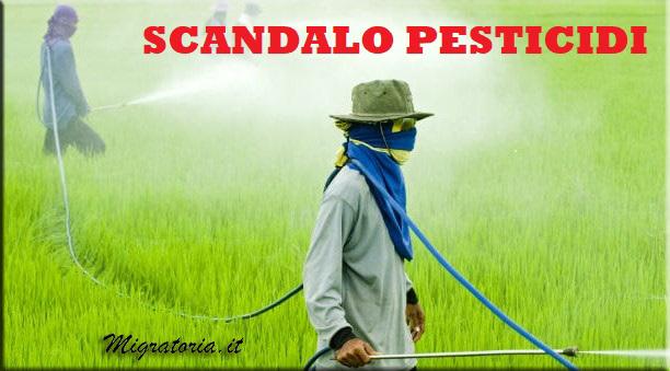 SCANDALO PESTICIDI