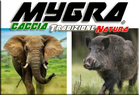 La caccia, strumento per la conservazione e la gestione delle specie in Africa come in tutto il mondo