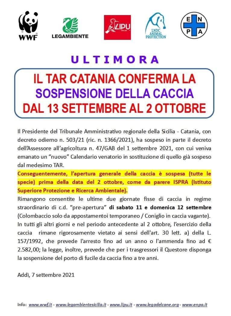 SICILIA. IL TAR DI CATANIA CONFERMA LA SOSPENSIONE DELLA CACCIA