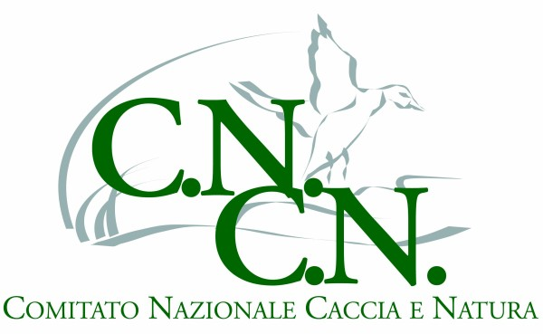 CN CN