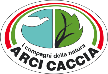 arcicaccia-logo
