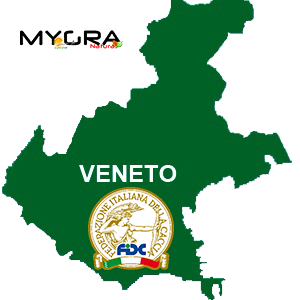 veneto png 2