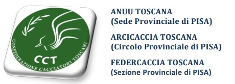 CCT PISA