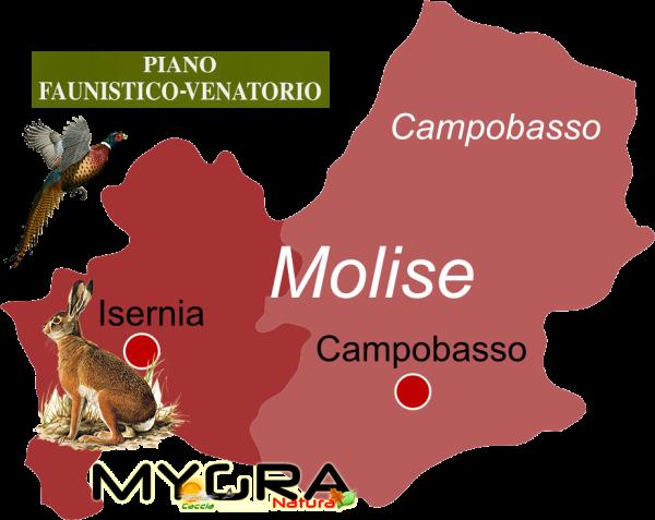 molise 2