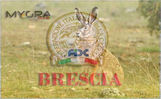 Federcaccia Brescia 1