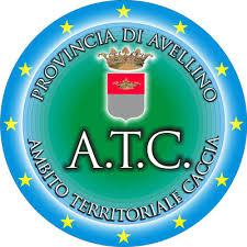 ATC Avellino