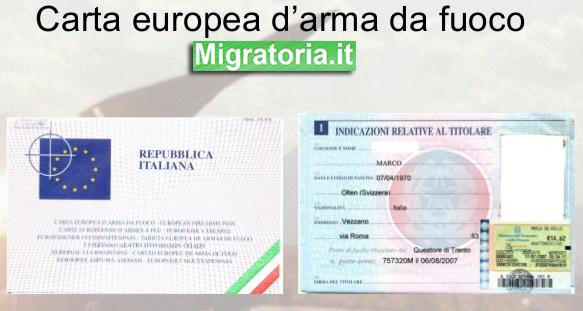 La carta europea delle armi salva la turista ungherese - Quanti bagagli si possono portare in crociera ...