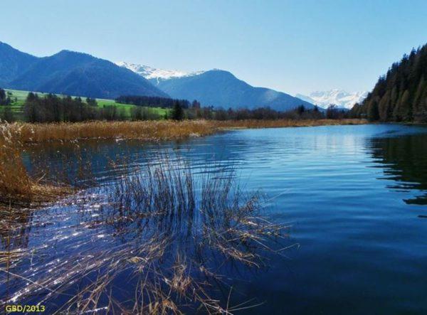 Bolzano ufficio caccia e pesca successo della - Letto di un fiume ...