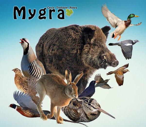 Fauna-mista-600x520migratoria