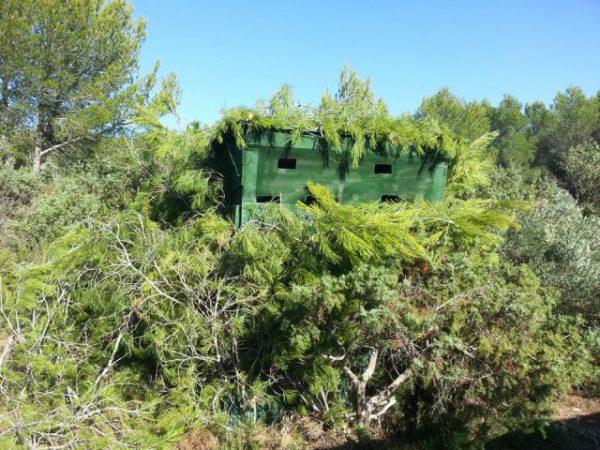 capanno grives-migration-2015-2