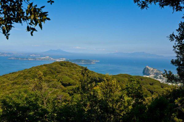 cretaio-e-bosco-della-maddalena-ischia-01-thumb-1200x800