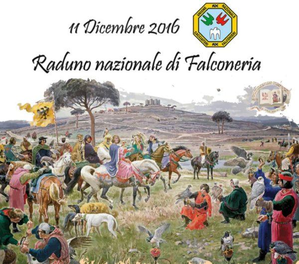 raduno-naz-falconeria-11-dicembre-2016