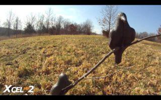 Crow-Hunting-in-Backyard-S7-1