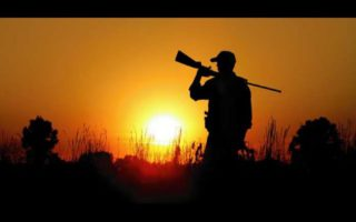 Crow-shooting-pest-control-585-in-the-bag