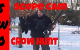 Hunting-Crows-with-a-Pellet-Gun-and-a-Scope-Cam