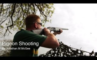 Pigeon-Shooting-in-Leicester