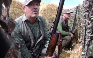 Caccia-al-colombaccio-Irlanda-Episodio-2-Wood-Pigeon-Hunting-Ireland-Episode-2