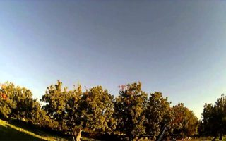 Thrush-Hunting-Cyprus-2013-2014-in-slow-motion