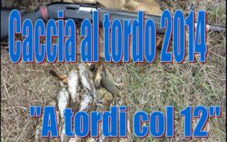 Thrush-hunting-Caccia-al-tordo-2014-A-tordi-col-12