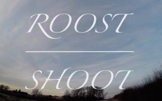 Woodpigeon-Hunting.-Roost-Shooting.-A-disappointing-Afternoon