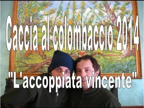 """Caccia al colombaccio 2014 """"L' accoppiata vincente""""-WOOD PIGEON HUNTING 28 GAUGE- –"""
