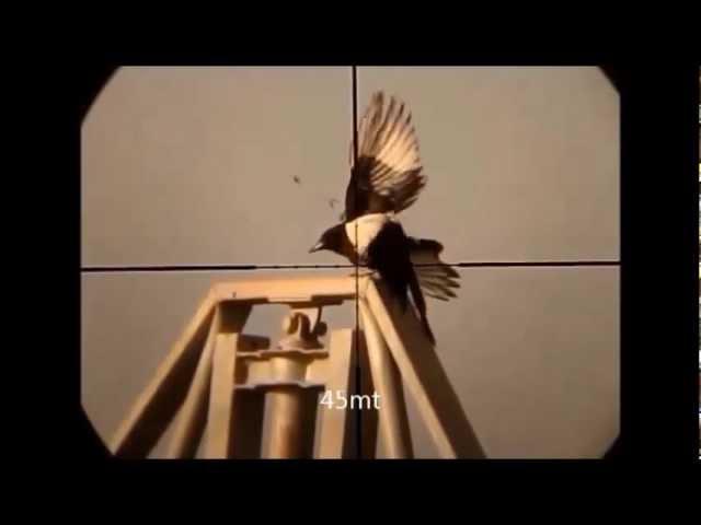crow hunting 2 newwwwww 15 crow –